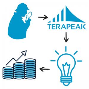 חברת חקר השוק Terapeak